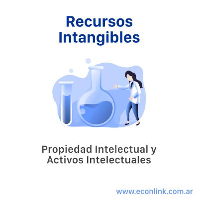 Recursos Intangibles