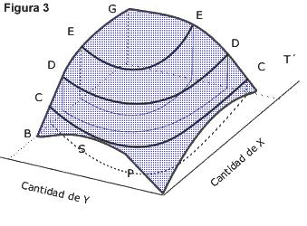 curvas de indiferencia y utilidad